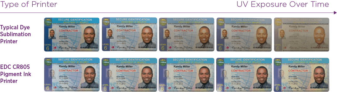 ID cards are exposed to UV