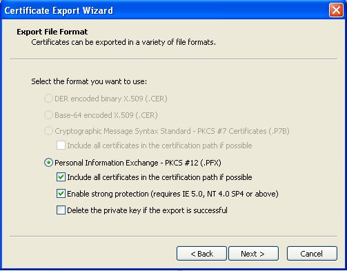 Select Personal Information Exchange As The Format You Want To Use. Check  The Box To Include All Certificates In The Certification Path.  Computer Certificate Format